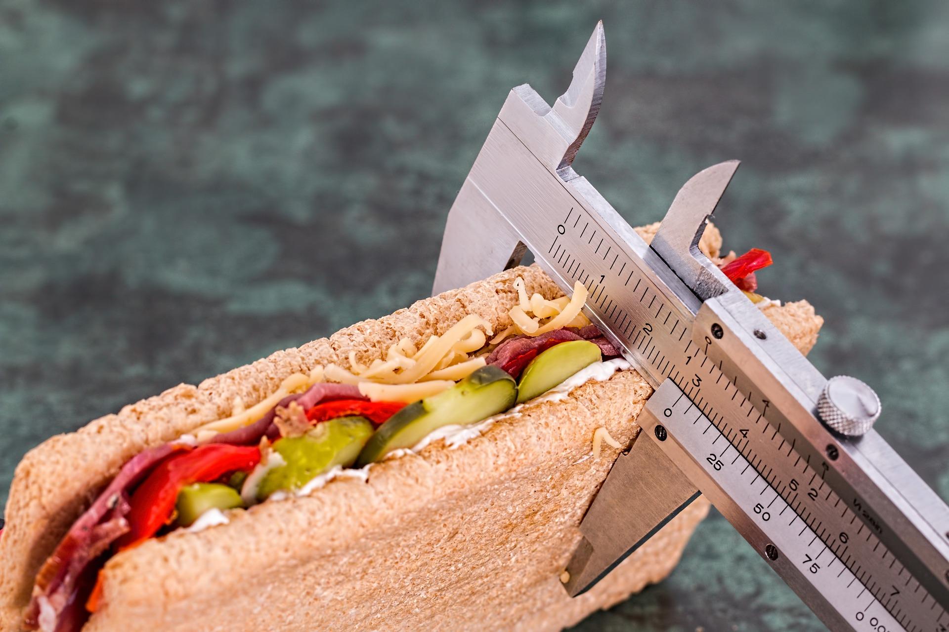 Dieta Radom